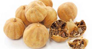خرید و فروش لیمو عمانی