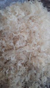 فروش کتیرا مفتولی پنبه ای خالصدر بازار ایران بصورت آنلاین